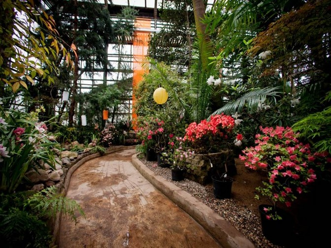 Ботанический сад ран фото